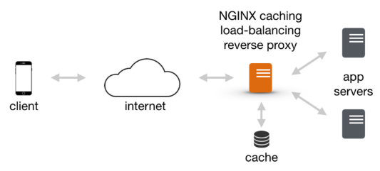 Docker compose : Nginx reverse proxy with multiple