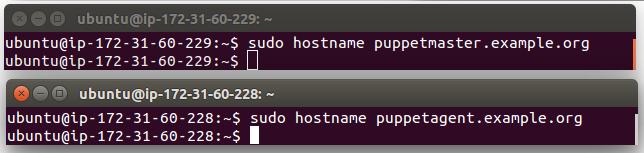 puppet_hostnames.png