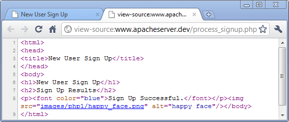 echo php html