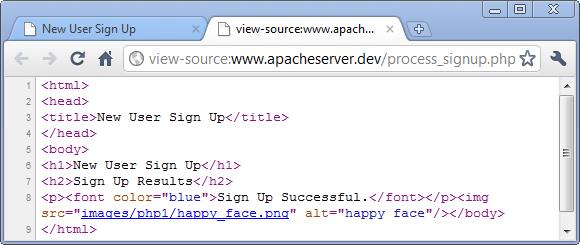echo php html