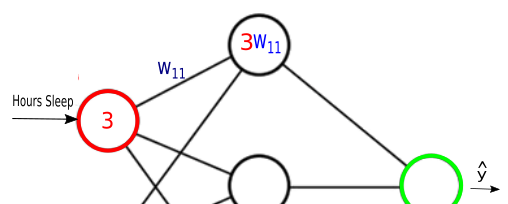 Synapsis-3w11.png
